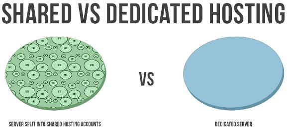 shared vs dedicated hosting